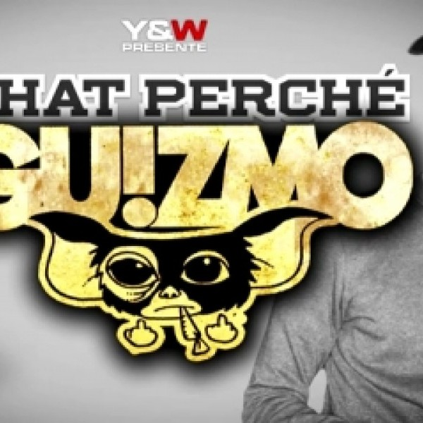 ecoutez le son chat perch u00e9 de guizmo